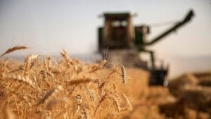 تامین امنیت غذایی و آسیب جدی به منابع آبی