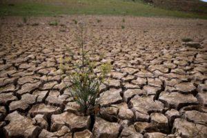 ۱۷ استان بیشتر از ۴۰ درصد کمبود بارش دارند