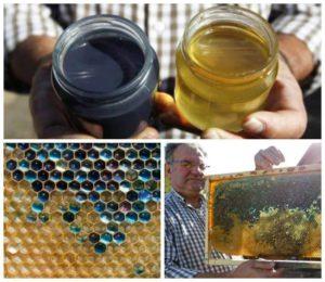 تولید عسل آبی توسط زنبورهای عسل فرانسوی