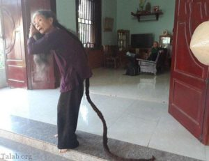 پیرزن ۸۱ ساله با بلندترین مو در ویتنام